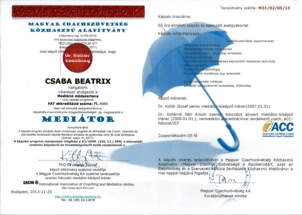 mediator_2013